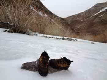 Can Woodland Shoes Be Used In Snow?